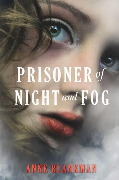Essay on Night and Fog